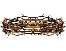 Corona de espinas naturales